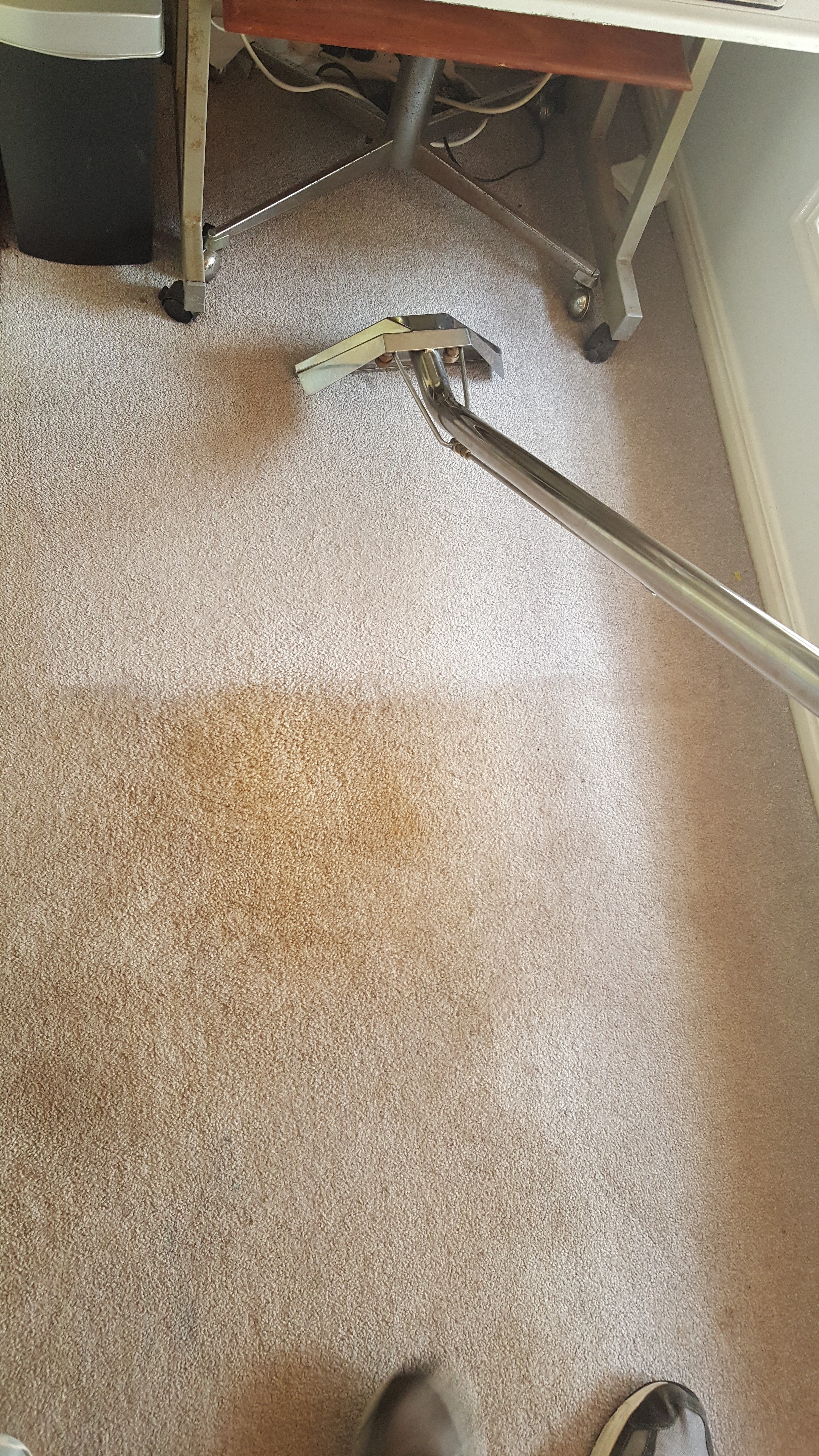 Carpet Cleaning_1
