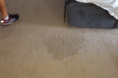 Stain Removal_1